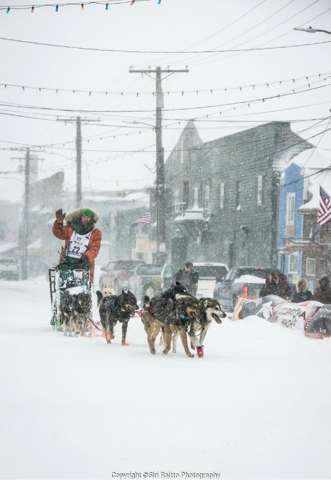 Coming into Nome Finish Line Iditarod Siri Photography