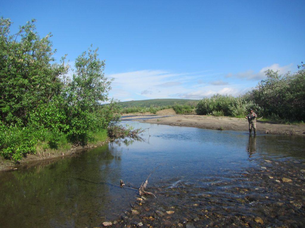 Fishing Along the River