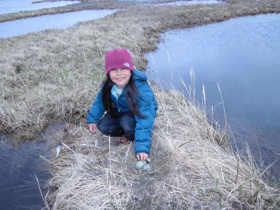 Gathering Eggs- Subsistence living