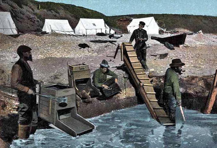 Nome prospectors, 1900