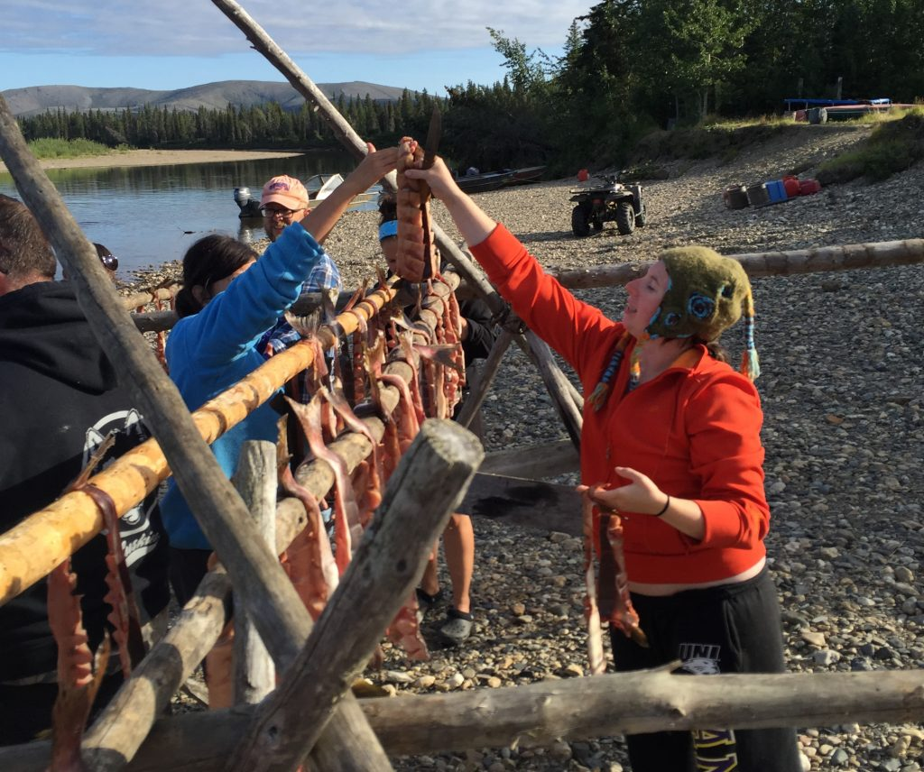 University of Alaska Teacher's Camp - Students learn how to seine, cut, hang and smoke river salmon.