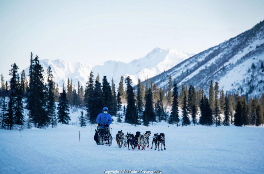 Iditarod Race 2020-Musher Photo by Siri Raitto