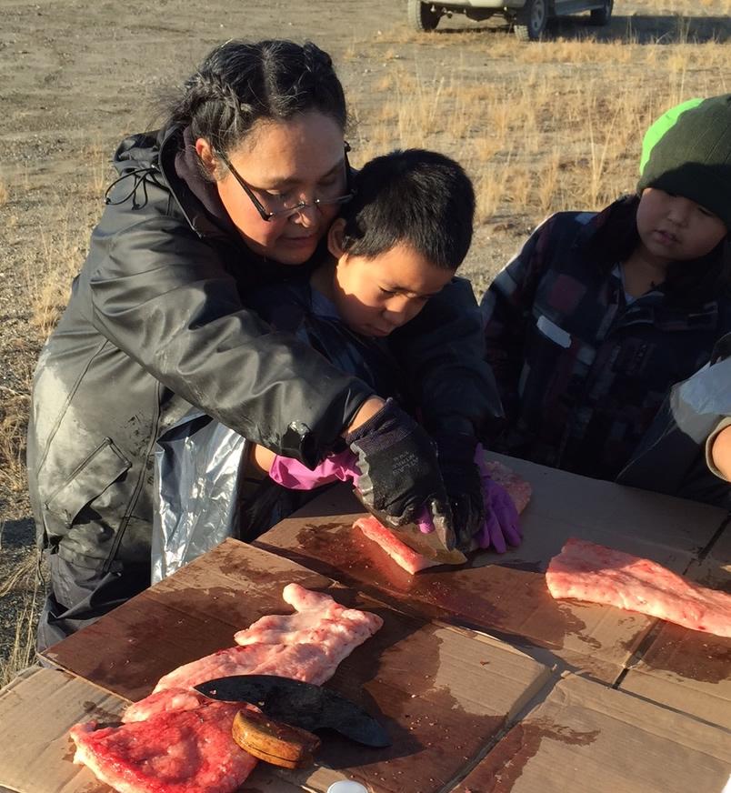 Teaching Fishing Cutting with an Ulu Knife